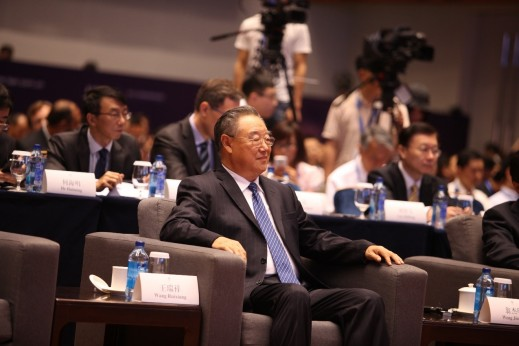Wang Ruixiang, Vice-Chairman of the State-Owned Assets Supervision and Administration Commission of the State Council, Member of the Party Committee of the Commission on Discipline Inspection.
